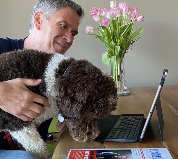 Tierisch Vernetzt Im Home Office